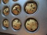 portland cakes