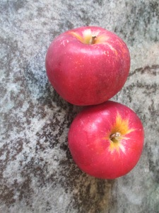 two Jonathan apples